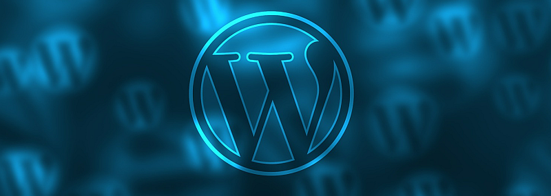 WORDPRESS – UNSERE TOP-LISTE DER PLUGINS